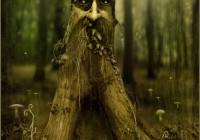 Tree spirit - Green man - spirito arboreo