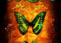 Butterfly: t-shirt illustration