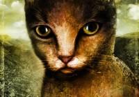 Gatto portrait - Ritratto di gatto