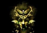 Moth: t-shirt illustration