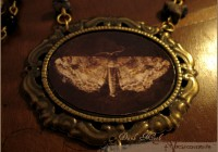 darkMoth-neck04